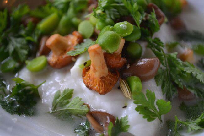 ledoyen vegetais