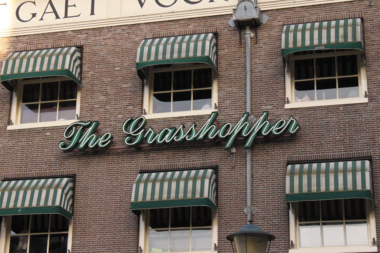 The Grasshopper 7 dicas Viaje Global